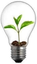 2013-07-15-grönskande glödlampa